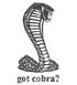 "SCMC ""got cobra?"" Tee shirts"